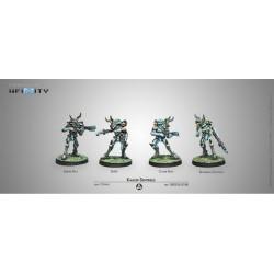 Kaauri Sentinels box