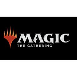Magic Constructed Turnier